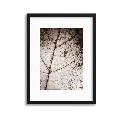 Worn by Time Framed Print - UH