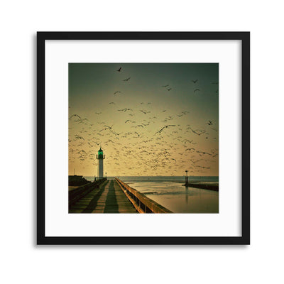 End of the Day Framed Print - UH