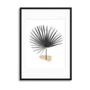 Tropical Leaves in Noir II Framed Print - UH
