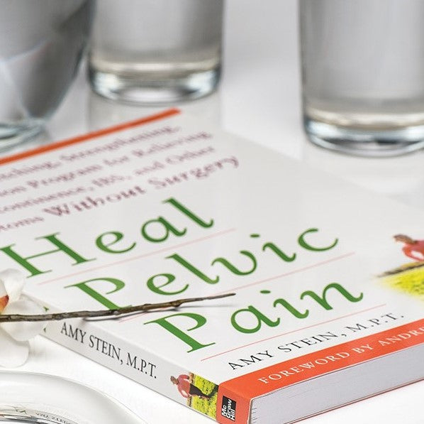 HEAL PELVIC PAIN<br> BY AMY STEIN