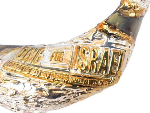 ONE FOR ISRAEL Small Shofar