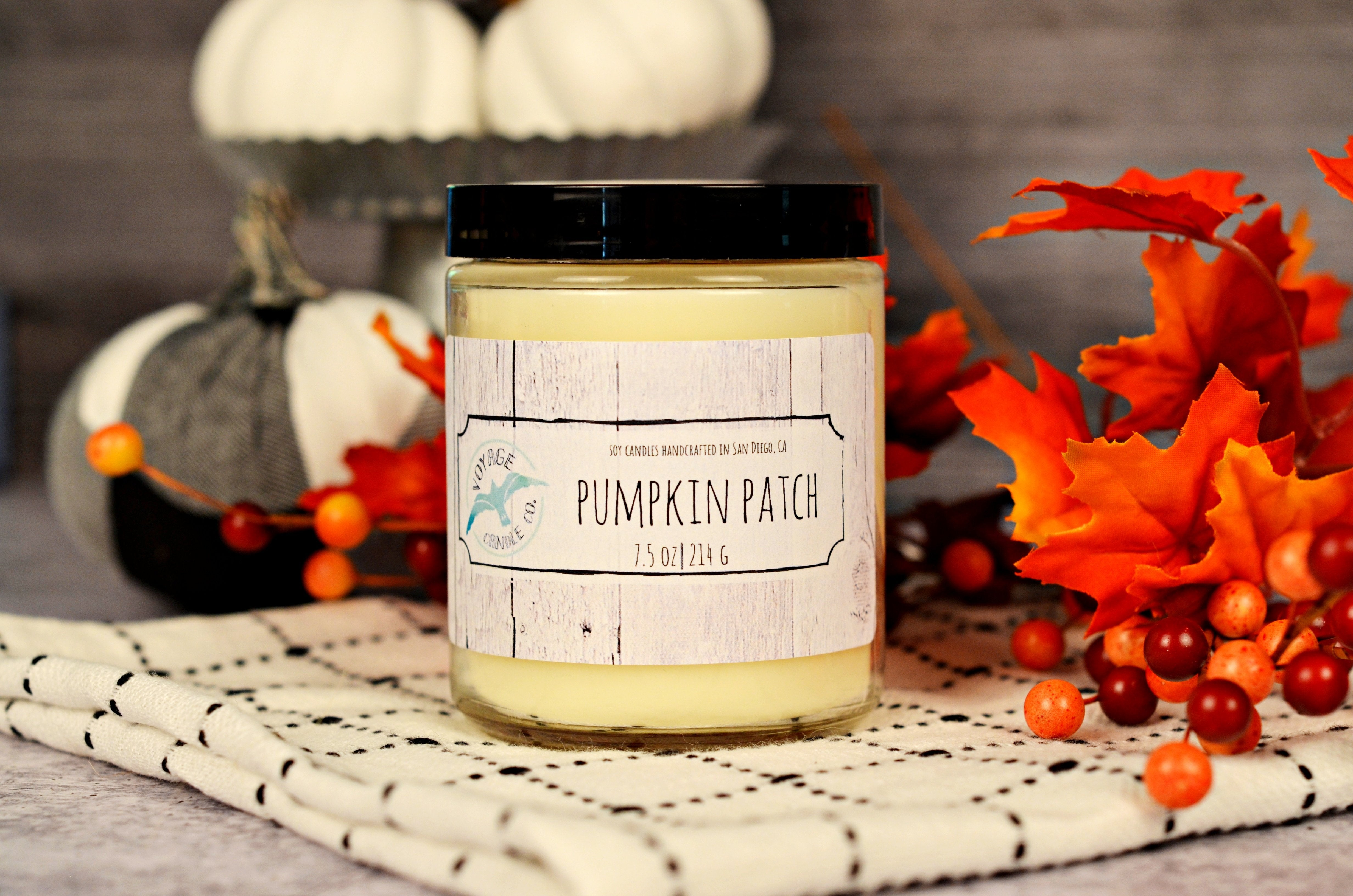 Pumpkin Patch - Large