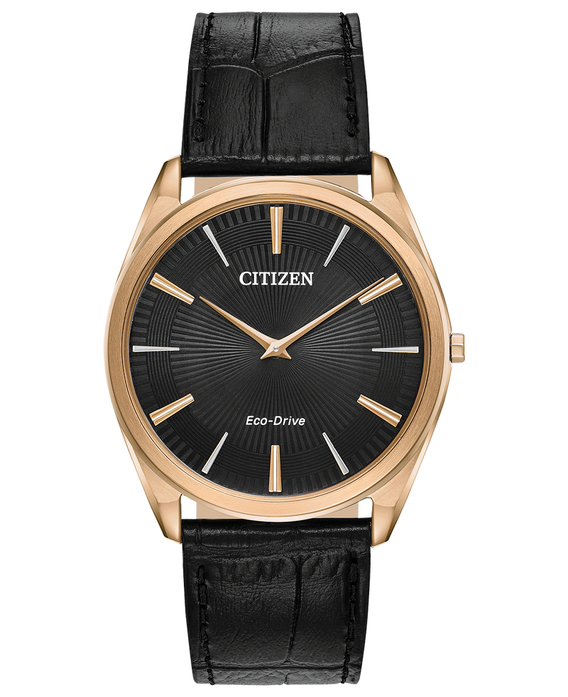 Citizen AR3073-06E
