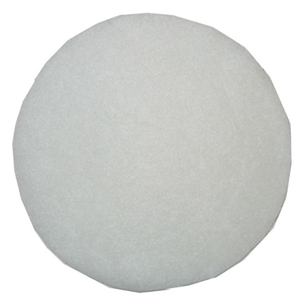 Bissell Filter, Secondary Disc Garage Pro 18p0, 203-0165 203-0165