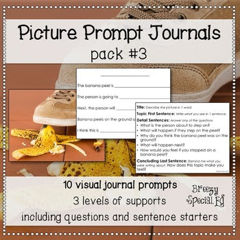 Picture Journal Prompts 3 {Leveled Writing} for Special Education