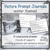 Picture Journal Prompts WINTER {Leveled Writing} Great for Special Ed