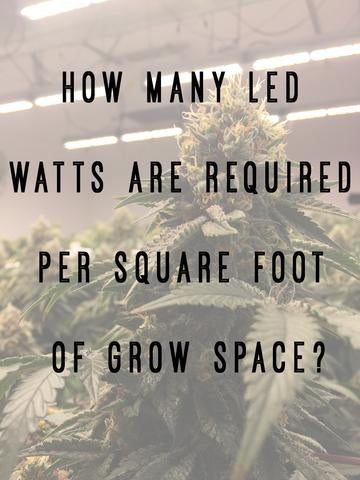 How Many Led Watts Are Required Per Square Foot Of Grow
