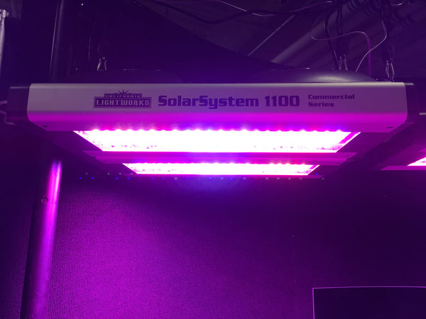 SolarSystem 1100 full-spectrum LED grow light