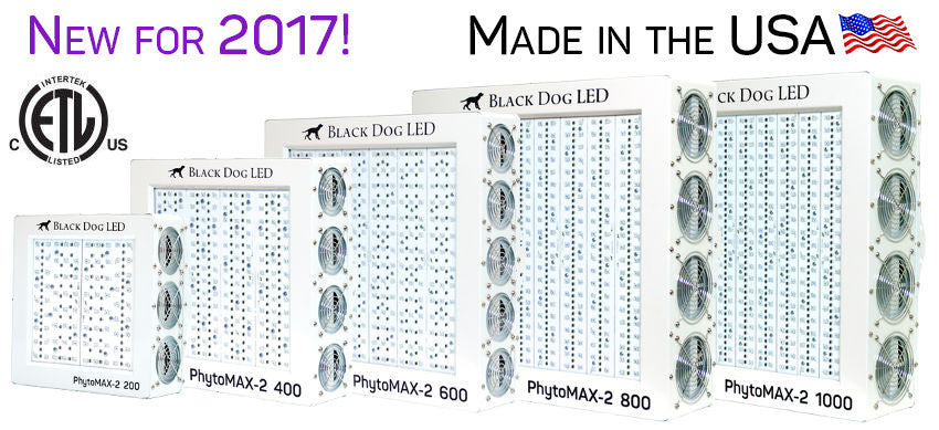 Black Dog LED Review PhytoMAX-2