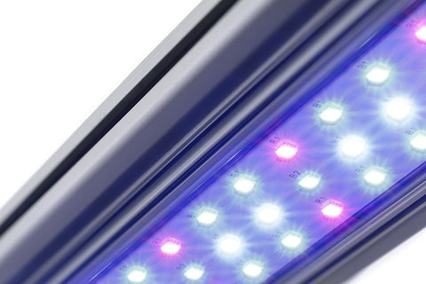KIND LED X-Series X40 / X80 Bar Light  - LED Grow Lights Depot