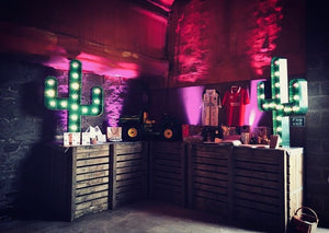 Light Up Cactus Hire for Events