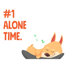 Dogs Need Alone Time