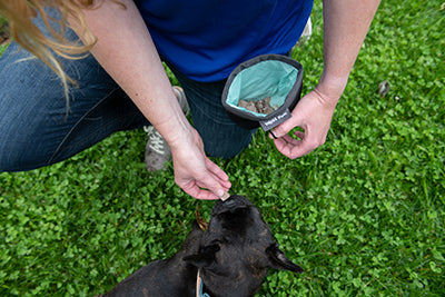 Outings Treat Pouch Training Tool