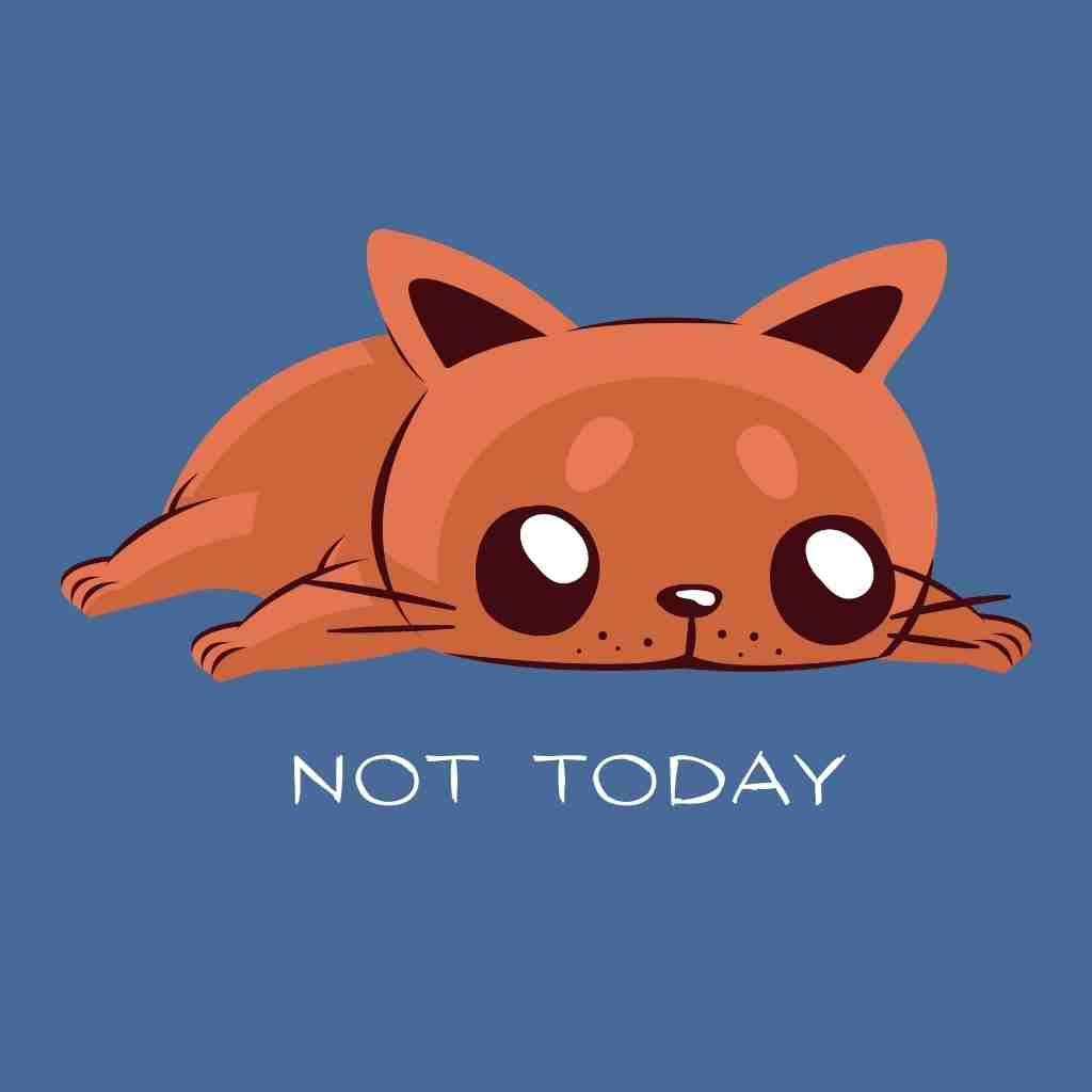 Not Today T-Shirt - Happy Meow Meow
