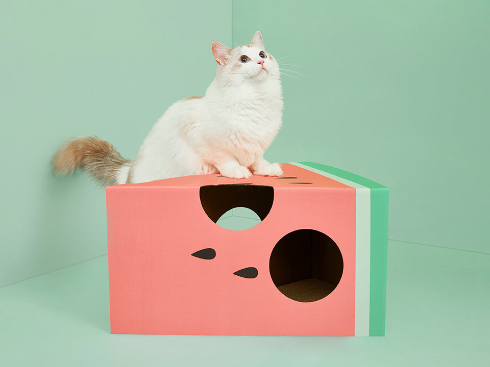 Watermelon Scratcher House