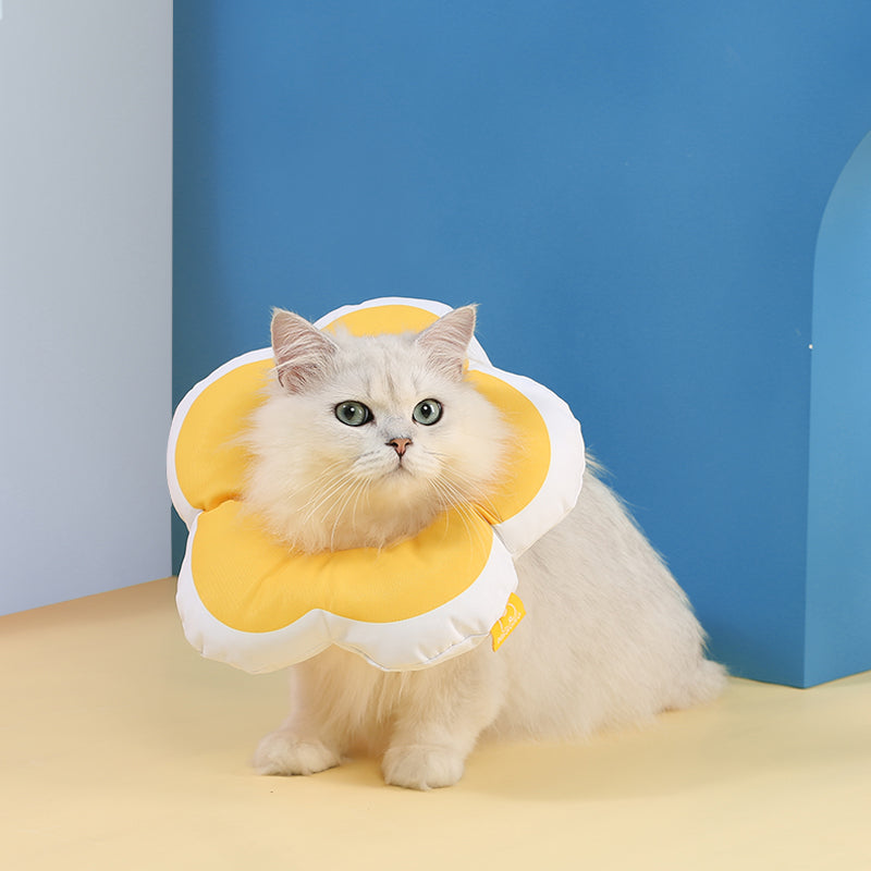 Bloom Soft Pet Cone