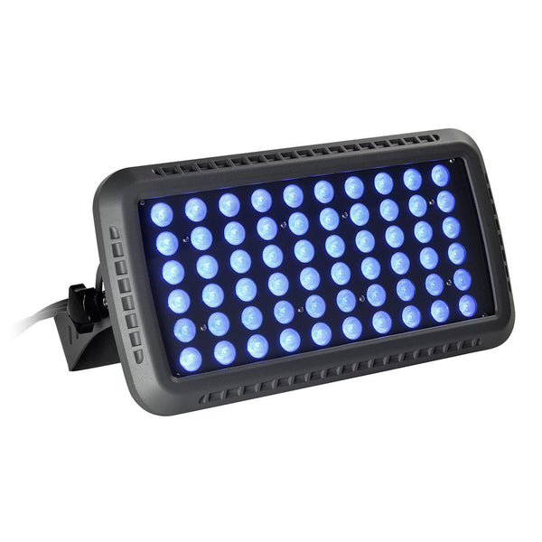 LED Flood Light LSL Series | 100Watt | Beam Angle 30° | Blue | Grey housing - nothingbutleds.com