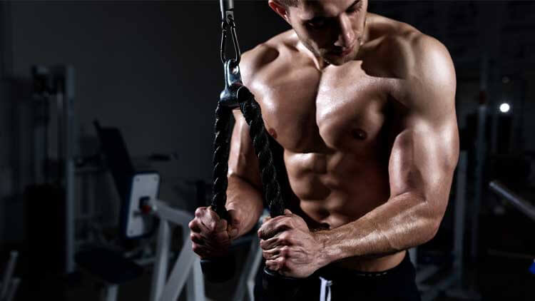 Muscular young man training triceps in the gym