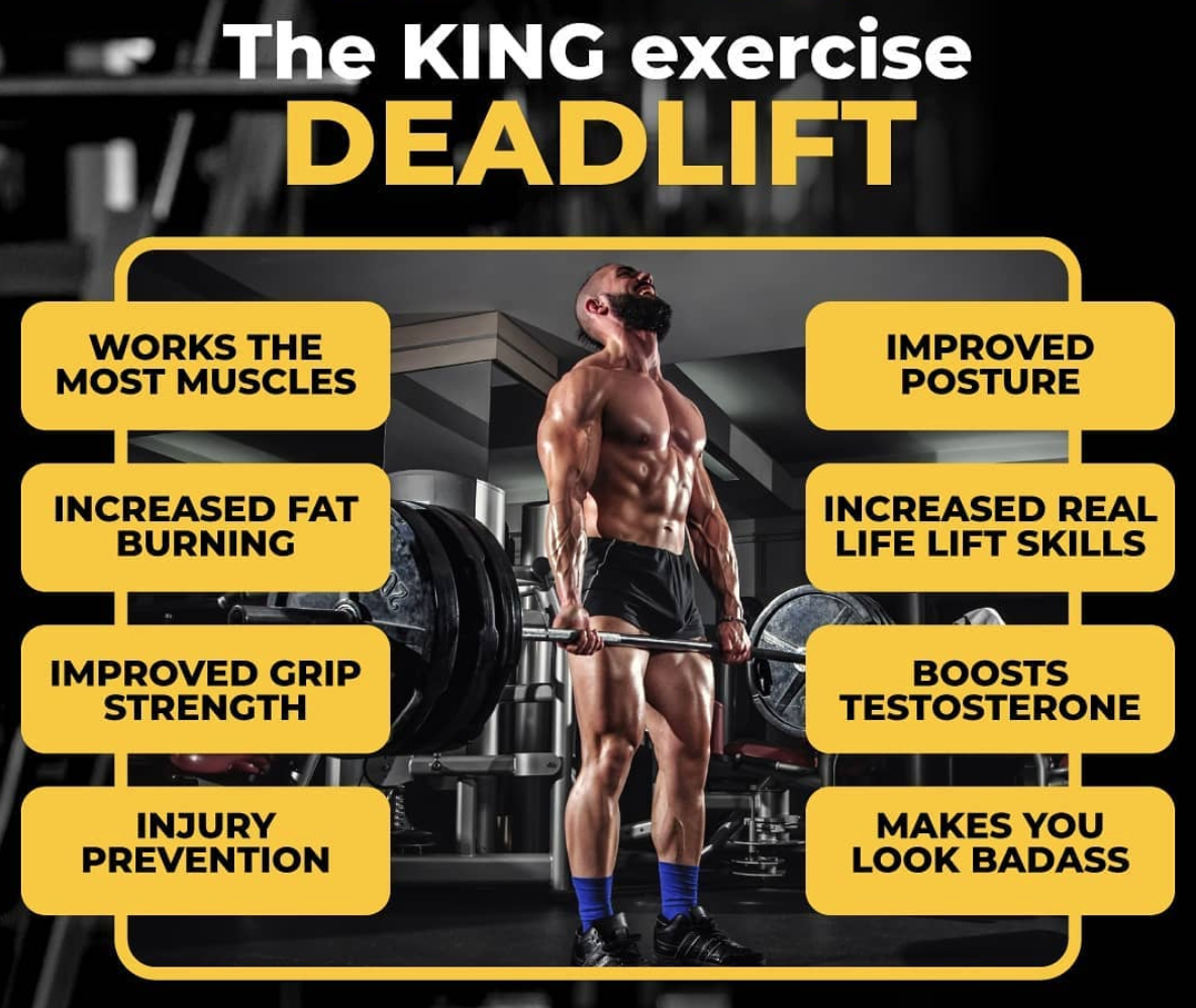 Infographic showing which muscles the deadlift works