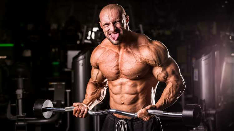 Muscle building alternatives