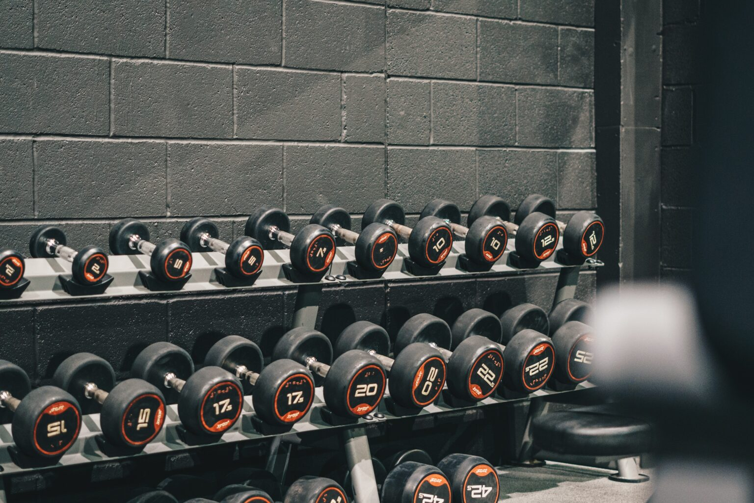 Dumbbell set in the gym