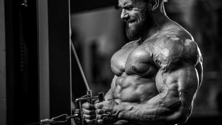Muscle building benefits