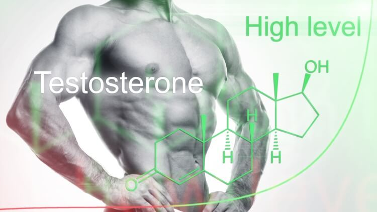 Muscular man with testosterone formula