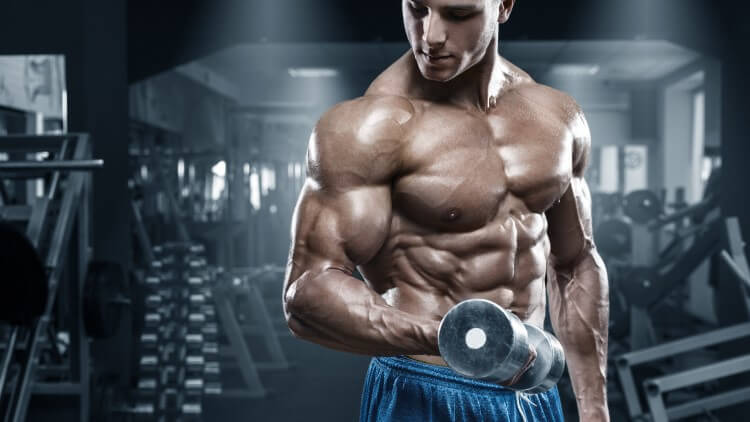 Muscular young man in dark gym