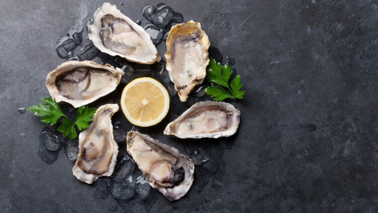 Oysters and lemon well presented