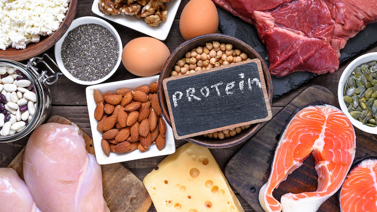 protein muscle gain