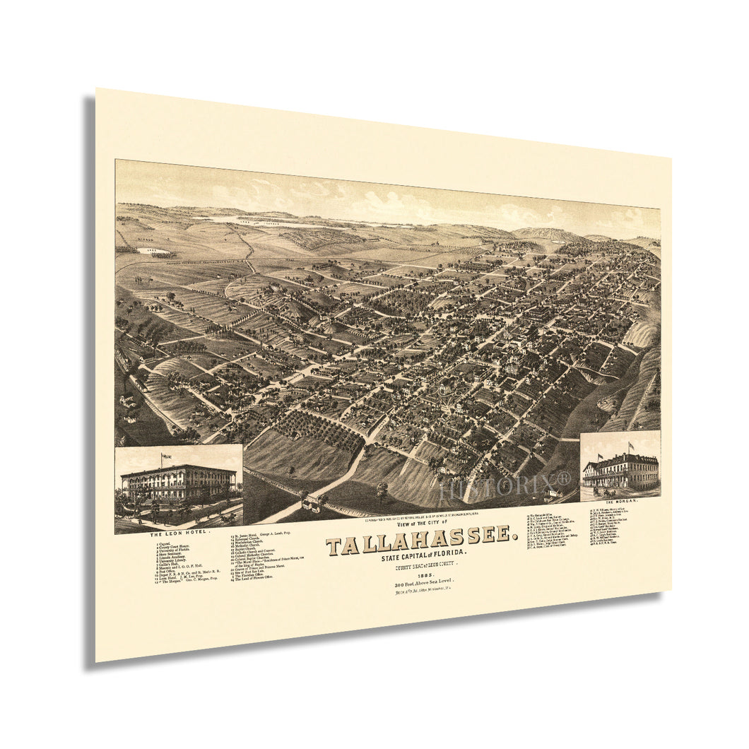 1885 Tallahassee Florida Map Poster - Vintage Map of Tallahassee Poster - Old Tallahassee Map - Historic Tallahassee Wall Art - View of Tallahassee FL Leon County