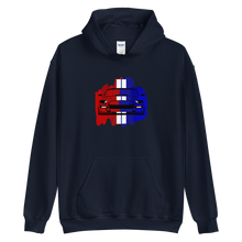 Load image into Gallery viewer, GT500 USA Hoodie