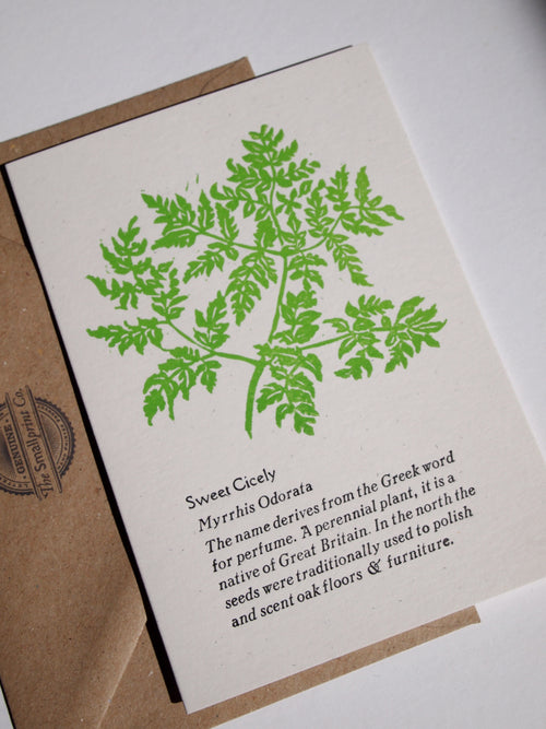 A fun and informative card for any botanical green fingered people out there, sold by Percy Langley