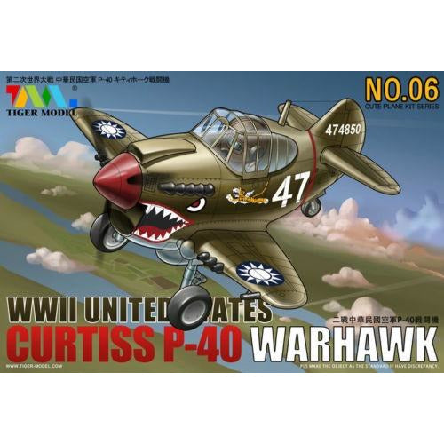Cute US P-40 Warhawk Fighter