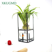Nordic Transparent Glass Double Layer Hydroponic Vase