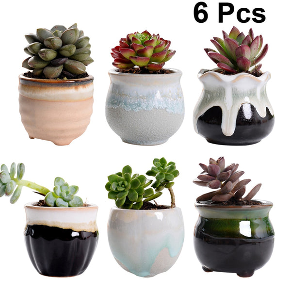 6pcs Creative Ceramic Succulent Flower Pots