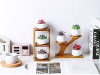 Succulents Ceramic Potted Home Desktop Can Rotate Ferris Wheel Flower Pot Creative Decoration Office Flower Container
