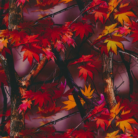 HCA025 - Bright Fall Camo (100cm)