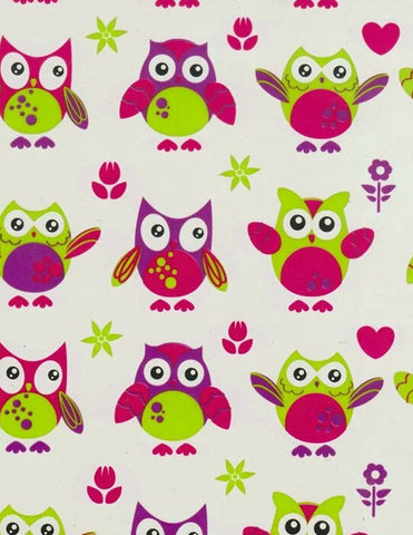 CAR021 - Cute Owls (50cm)
