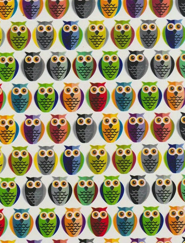 CAR022 - Two Tone Owls (50cm)