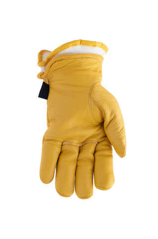 Deerskin Gloves - 27-1004-B-BUC