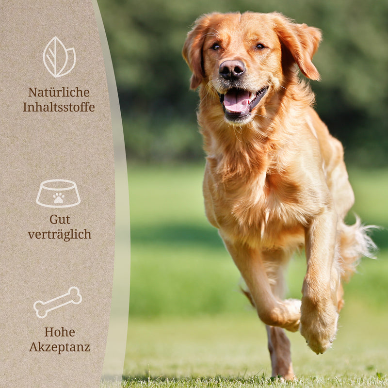 Gelenktabs Hund Benefits