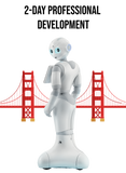 PEPPER Robot Professional Development