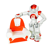 NAO Evolution + Docking Station Pack