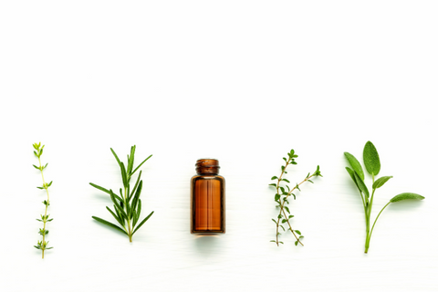 Essential oils are highly concentrated essences of plants