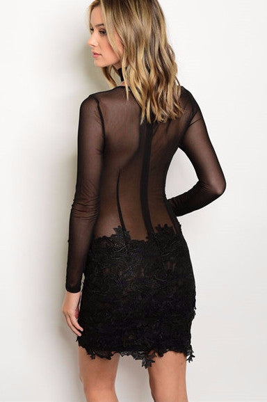 All Lace & Mesh Dress