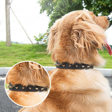 Load image into Gallery viewer, Bite-Proof Pet Collar