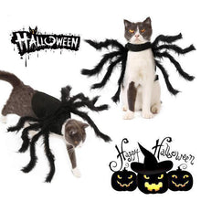 Load image into Gallery viewer, Spider Costume for Pets