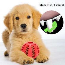 Load image into Gallery viewer, Dog Chewing Rubber Ball