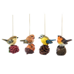 Bird on Nut/Fruit Decoration